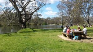 5 Activities to do in Albury