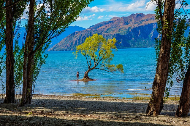 Picture Perfect Day Trips to Take from Wanaka